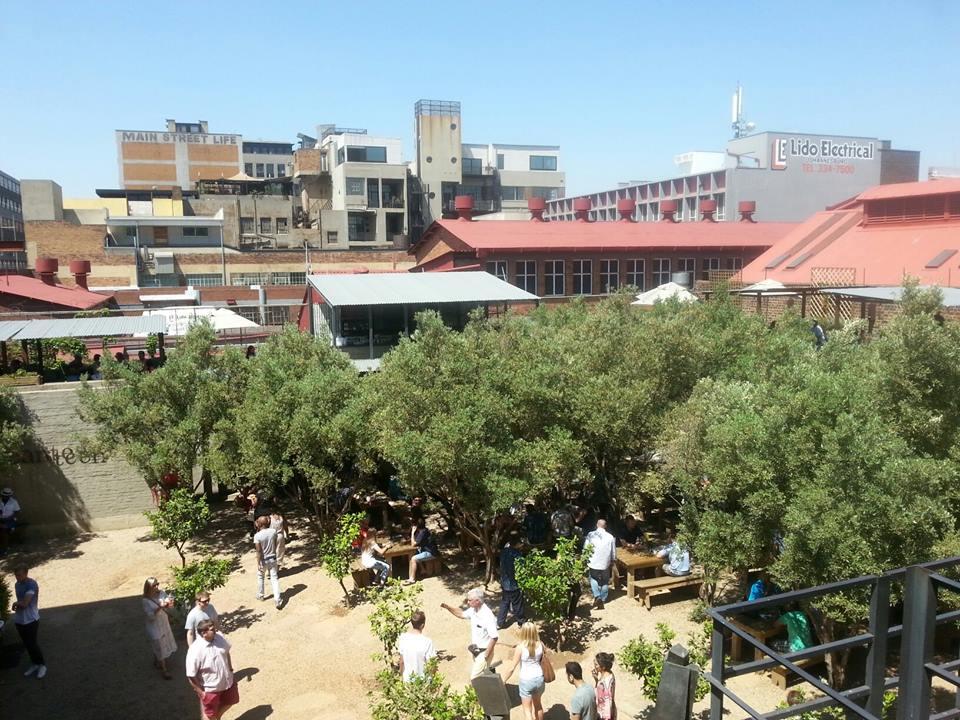 Erster Bericht aus Johannesburg